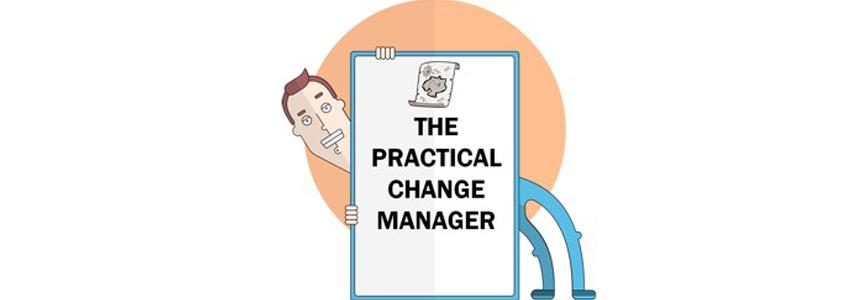 The Practical Change Manager 5/9