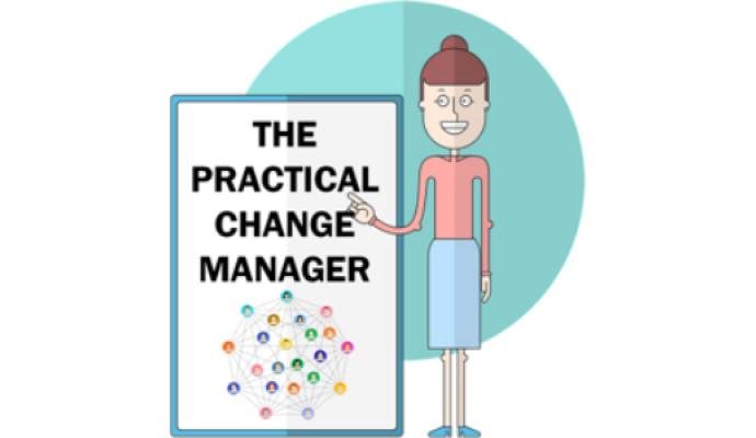 The Practical Change Manager